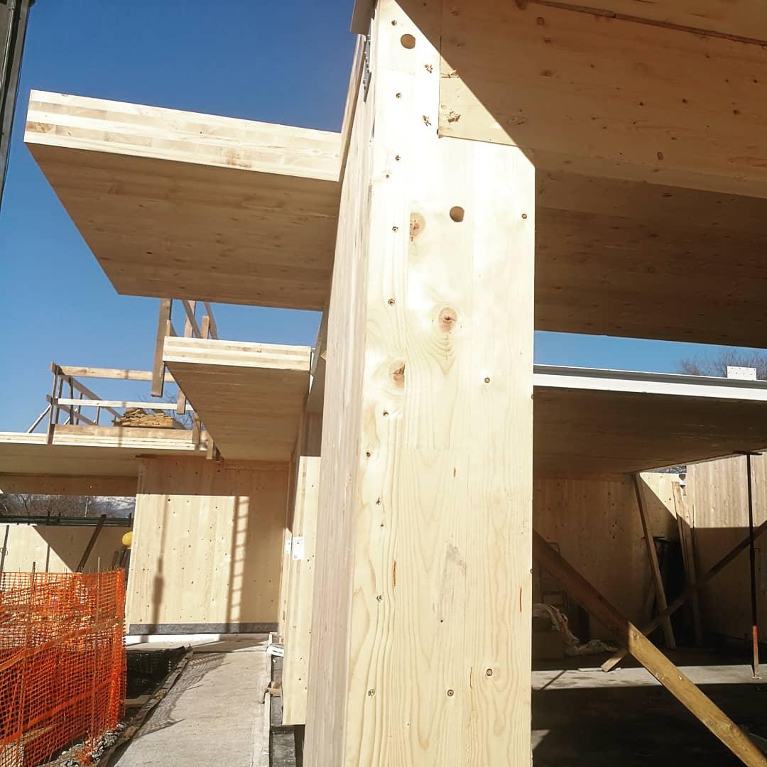 clt sedign mass timber designer